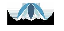 Palm Ventures Logo